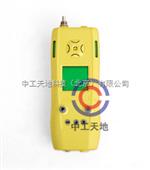 LBT-EXCO/B泵吸式可燃气、一氧化碳二合一检测仪