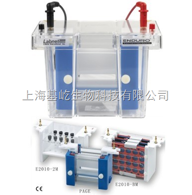 Enduro™垂直电泳系统