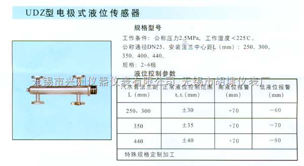 UDZ型电极式液位传感器