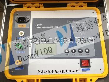 绝缘电阻测试仪型号,绝缘电阻测试仪规格-上海端懿