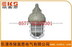 GC101_GC101_GC001_防水防尘防震防眩灯,防眩泛光灯