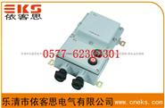 BQD53-32/40/50/63防爆磁力起动器,BQD53防爆电磁启动器, BQD53-32/40