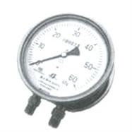 不銹鋼差壓表 CYW-150B