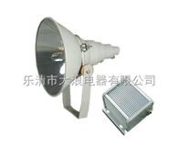 NTC9200成都防水防尘防震投光灯1000W