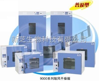 上海一恒立式鼓风干燥箱DHG-9620A