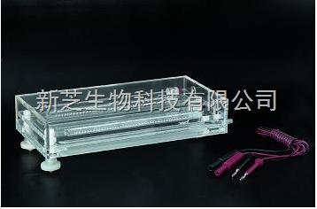 北京六一等电聚焦电泳槽DYCP-36