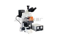 TL3001落射荧光显微镜