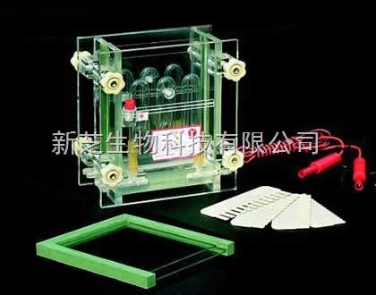 北京六一夹芯式垂直槽DYCZ-28A/垂直槽/编号:121-2810电泳现货
