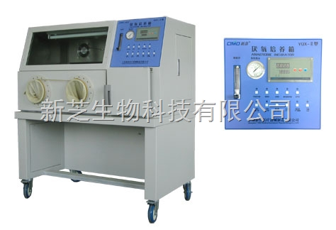 供应上海新苗产品YQX-Ⅱ厌氧培养箱