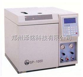 SP-1000單檢測器型氣相色譜分析儀