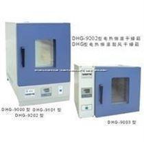 DHG-9202-2电热恒温干燥箱