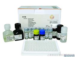 大鼠可溶性白介素6受体(sIL-6R)ELISA试剂盒