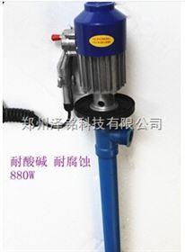 SB-3泽铭化工腐蚀泵 塑料插桶泵 泽铭880W耐酸碱抽液泵