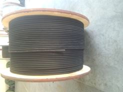 JV电缆-电机引接电缆