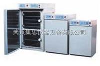 ZY/CP-ST50A二氧化碳培养箱