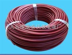 ZR-DJGVFP2硅橡胶电缆/品牌