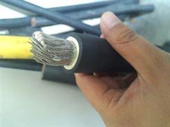电机引接电缆JBQ,JXN/供应厂家