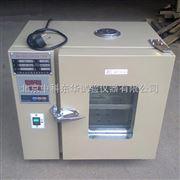 101-1电热鼓风干燥箱