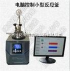 供应TFM电脑控制小型反应釜