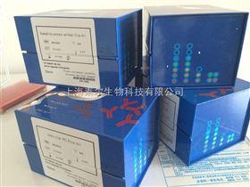 大鼠前列腺素I2(PGI2)Elisa试剂盒