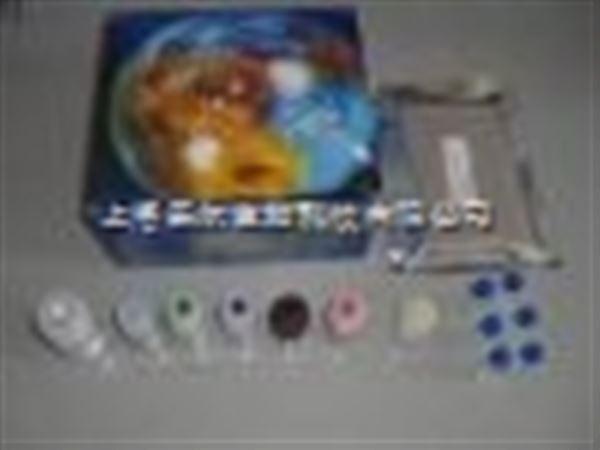 猪钩端螺旋体抗原ELISA试剂盒