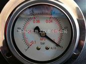 YN/YTN系列不锈钢耐震压力表