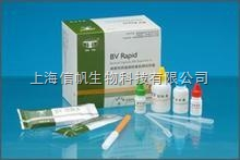 大鼠白细胞介素10(IL-10) ELISA试剂盒
