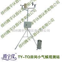 TY-NT田间小气候自动观测仪