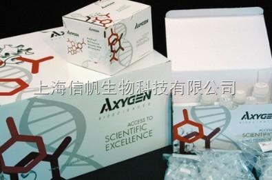 人血管紧张素Ⅰ(AngⅠ) ELISA试剂盒精灵敏度高,免除您的实验后顾之忧