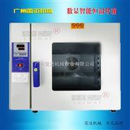 恒温气流干燥箱,数显电热鼓风物料烘干机
