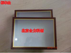 生活史标本盒 270*180*25mm  现货 北京直销
