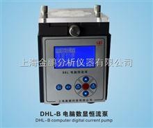 DHL-BDHL-B电脑恒流泵