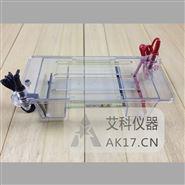 北京六一DYCP-31DN琼脂糖水平电泳仪(槽)(小号)