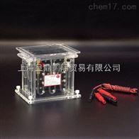 电泳仪|DYCZ-40B型转印电泳仪促销价