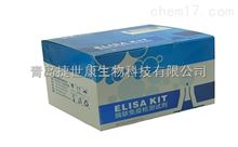 48T/96T【人游离睾酮(F-TESTO)elisa试剂盒】生产厂家