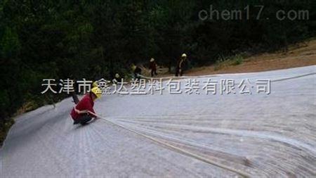 草坪无纺布多少钱一吨?天津种草用白色无纺布
