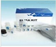 小鼠微管蛋白α3A(TUBα3A)检测试剂盒