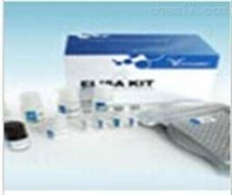 大鼠α-胞衬蛋白(SPTAN1)检测试剂盒