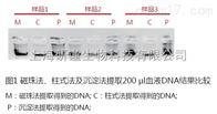 48次磁珠法血液DNA提取试剂盒