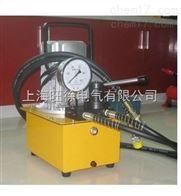 雙回路電動泵 上海旺徐特價供應廠家