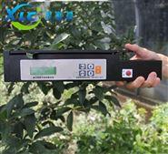 叶面积测量仪XCTP-1000A厂家直销