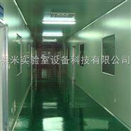 广州净化工程 口罩车间洁净厂房