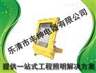 CCD97液化气站led防爆投光灯100W-120W加油站专用丰绅LED防爆泛光灯