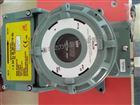 日本理研在线式VOC气体检测仪价格