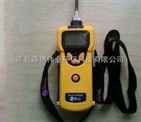 进口美国华瑞可燃气有毒气体检测仪PGM-1600