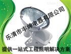 CNT9160 丰绅 防震高亮度投光灯