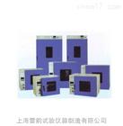 DHG-9245A电热鼓风干燥箱上海奉贤厂家直销