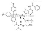 Bz-rA 亚磷酰胺单体
