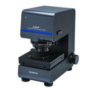 奥林巴斯 激光共聚焦顯微鏡