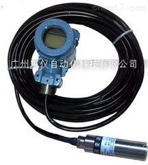 DP61型一体显示投入式压力变送器